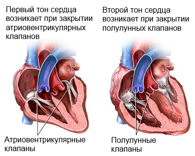zabolevania-serdca-12