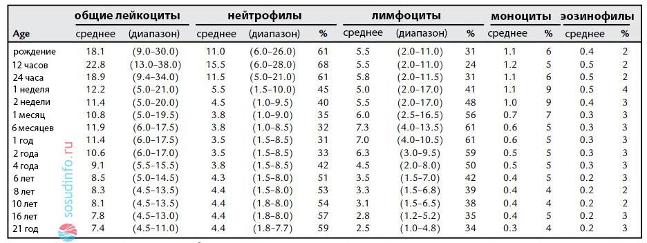 Показатель лимфоцитов выше нормы